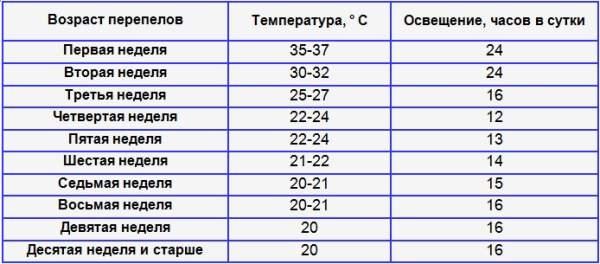 Таблица температуры и освещения для перепелят