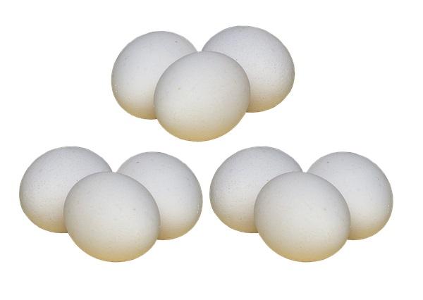 Новая яйценоская порода кур Барред Рок