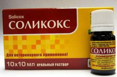 Препарат для лечения кокцидиоза - Соликокс