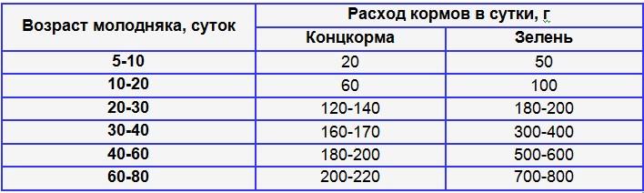 Таблица затрат кормов при кормлении гусей