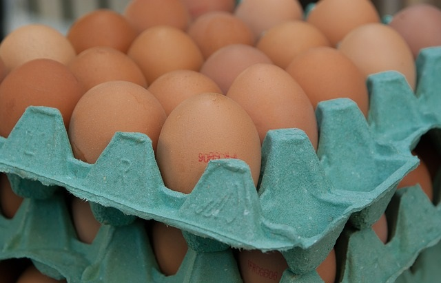 Датская домашняя птица и продукция птицеводства снова разрешены к экспорту