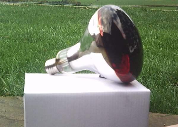 Инфракрасная лампа для обогрева гусят