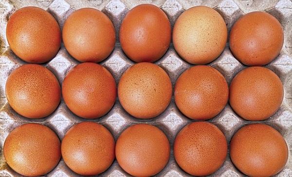 Крупная птицеводческая компания вводит практику клеймления яиц