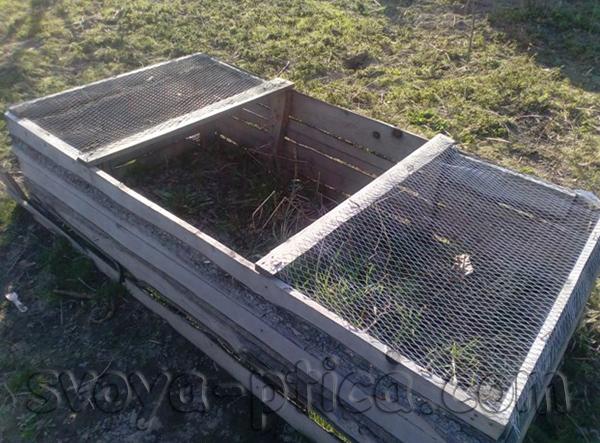 Ящик для молодняка уток башкирской породы
