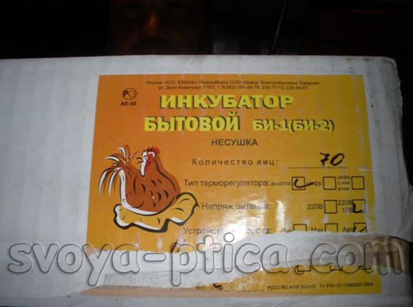 Вывод цыплят в инкубаторе в домашних условиях