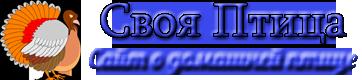 svoya-ptica.com