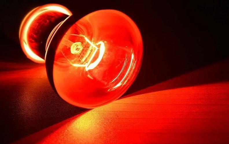 Обогрев инфракрасной лампой