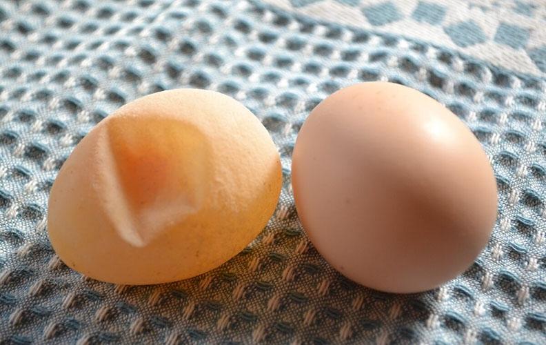 Яйцо с мягкой скорлупой