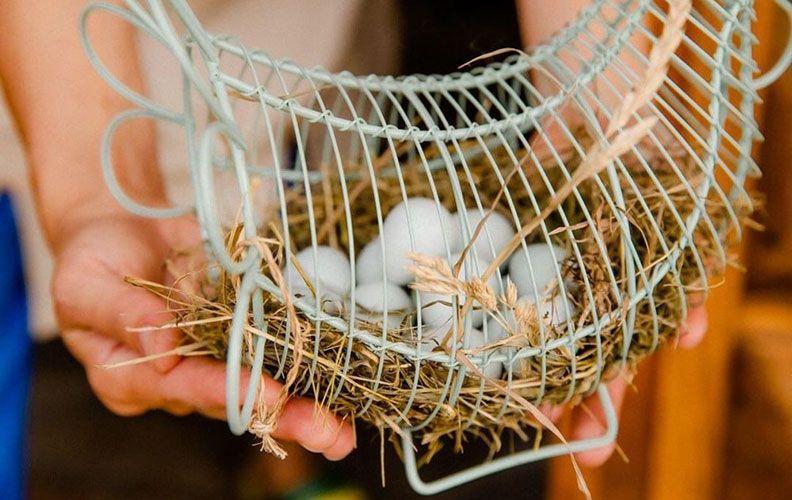Яйца перепелов селадон