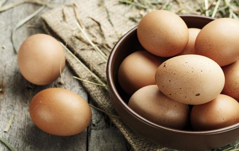 Яйца ливенских ситцевых кур