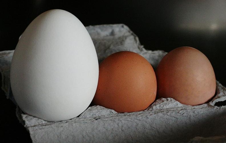 Гусиное и куриные яйца