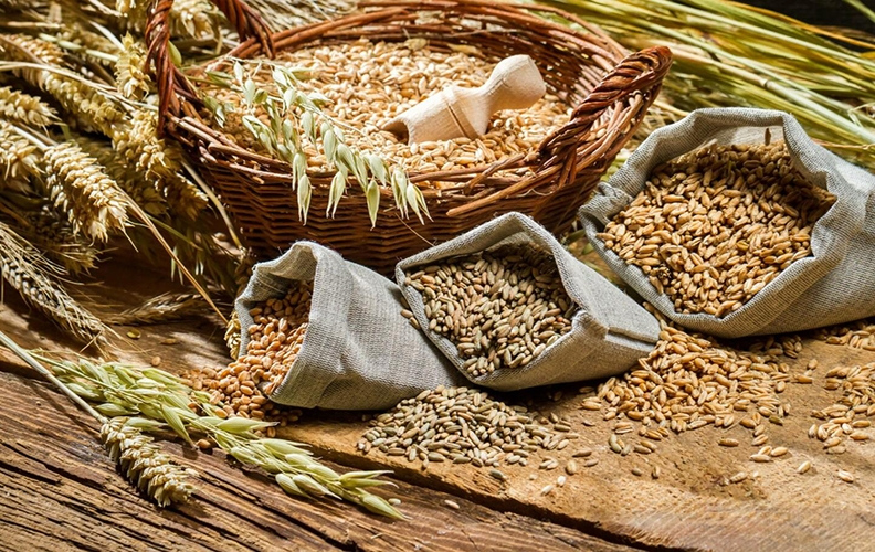 Зерновые курам