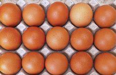 НОВАЯ ЗЕЛАНДИЯ: Крупнейшая птицеводческая компания вводит практику клеймления яиц